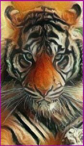 Tiger Power Animal